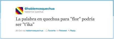Het Quechua woord voor 'bloem'