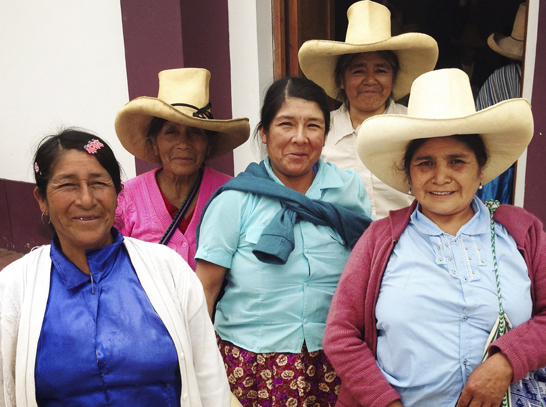 A group of women from Huancabamba contributing to the Quipu project. (Photograph republished with permission.)