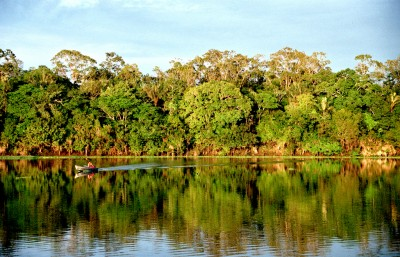 Amazonia, Brasil. Photo by Andre Deak and used under a CC BY 2.0 license.