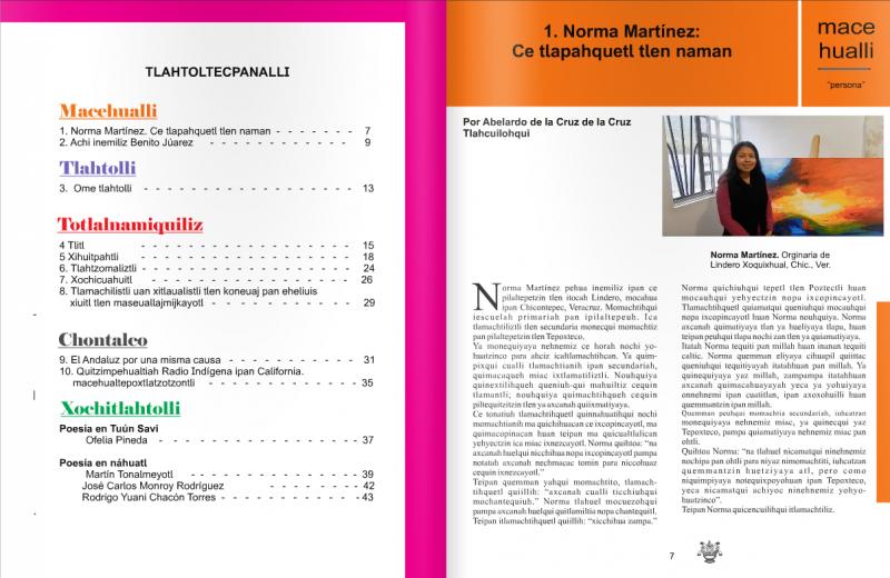 Ejemplo de los interiores del Número 1 de la Revista Yolitia.