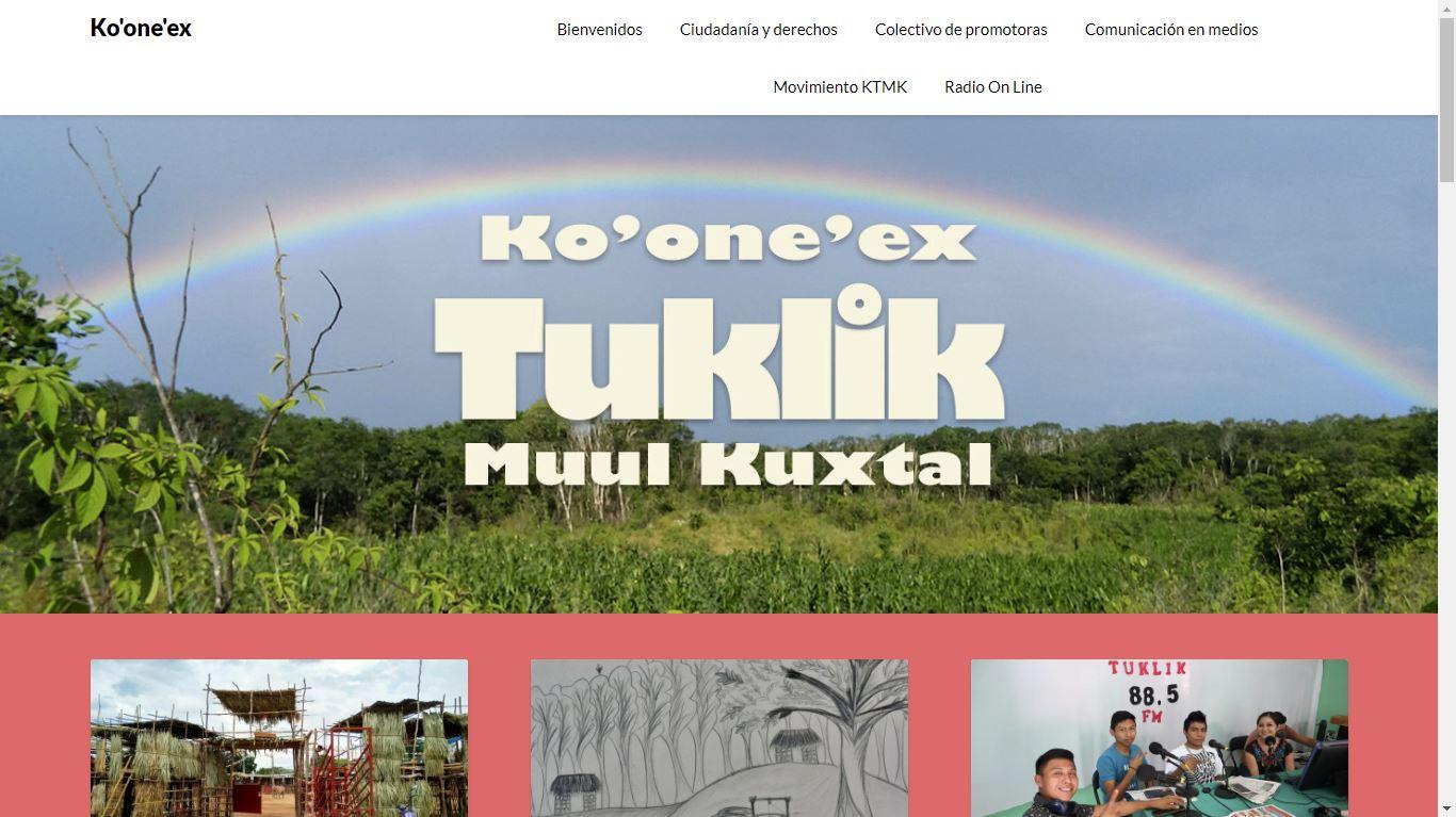 Captura de pantalla de la página web del colectivo Tuklik